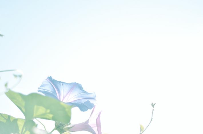 DSC_150001.jpg