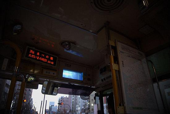 DSC_959701.jpg